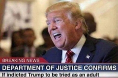 trump-adult